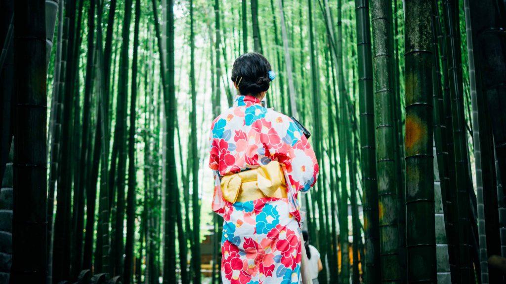 was ist eine geisha